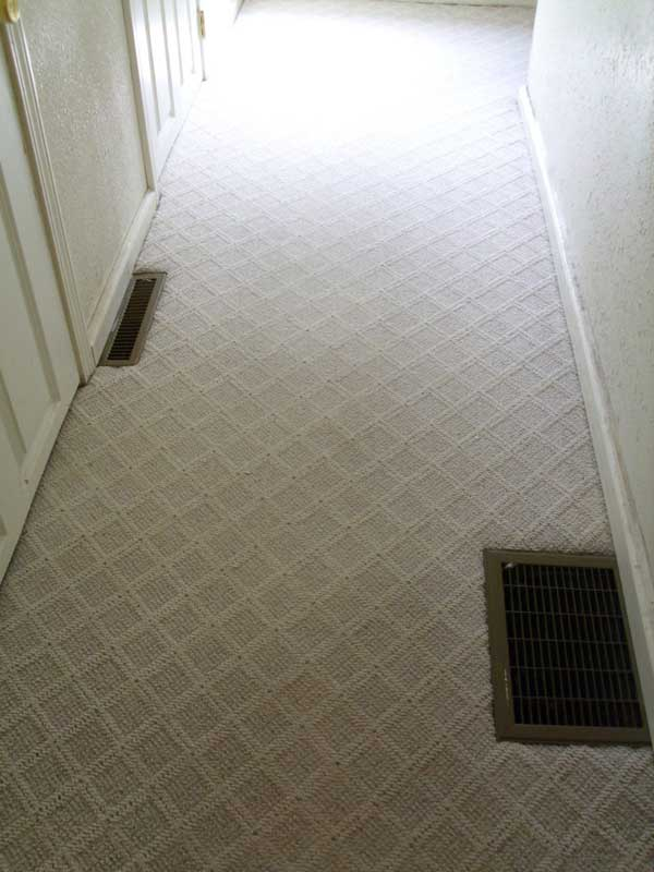 Carpet-Cleaning1