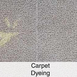 Carpet Dyeing